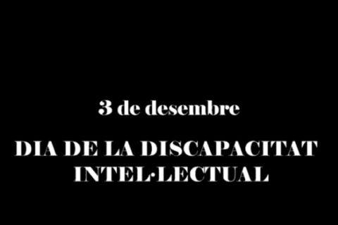3 de desembre, Dia Internacional de les Persones amb Discapacitat