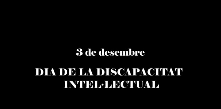 3 de diciembre, Día Internacional de las Personas con Discapacidad